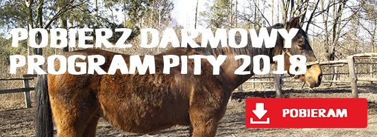 Program PITY 2018 - 1 procent podatku dla koni